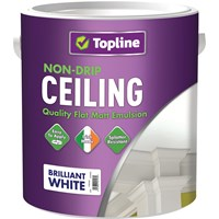 Topline  Ceiling Paint Matt Brilliant White - 5 Litre
