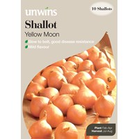 Unwins  Yellow Moon Onion Sets